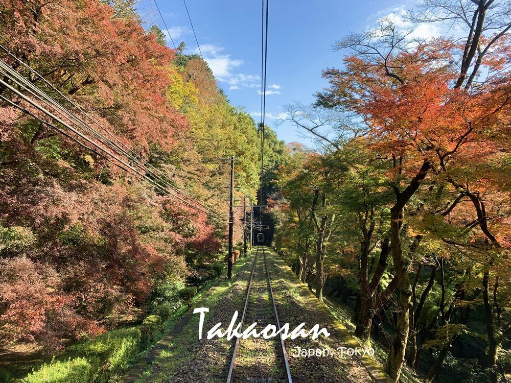 東京高尾山,7條健行步道,年登山人數居世界之冠