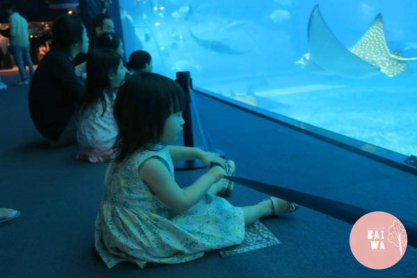水族館3 (Copy).jpg